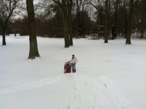 Tey&sled