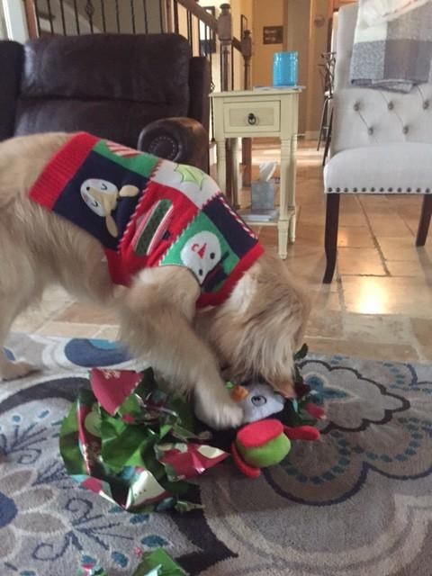 Christmas_Lena1