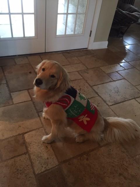 Christmas_Lena3