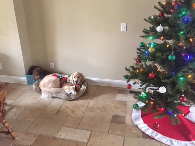 Christmas_Lena4