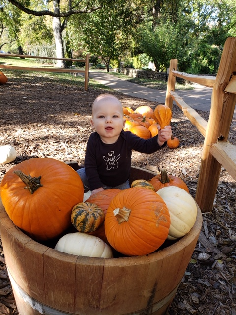 CheekwoodPumpkins_Oct24