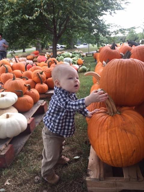 Pumpkins4_Sep22